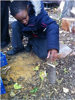 forestschool4.png